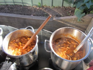 2 kinds of wallaby stew...I like the way WordPress puts the photos in in the sequence I put them in....NOT