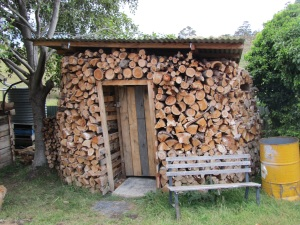 Compost toilet encased in woodshed, beautiful, no?