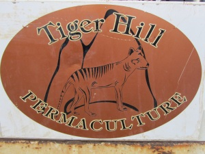 I decided to volunteer at Tiger Hill before I left home. I was told that 6 weeks in Tas was too long to cycle about, and it is all good, but my time here is not long enough!  it is very interesting to learn more about permaculture and Paul seems to have most of the literature on it. Bill Wollison, the fellow who coined the term permaculture ( from permanent culture and permanent agriculture), is from Tasmania. The course we are catering for is Earthworks and they are surveying the property and getting ready to build a proper dam to help with water catchment and flow.